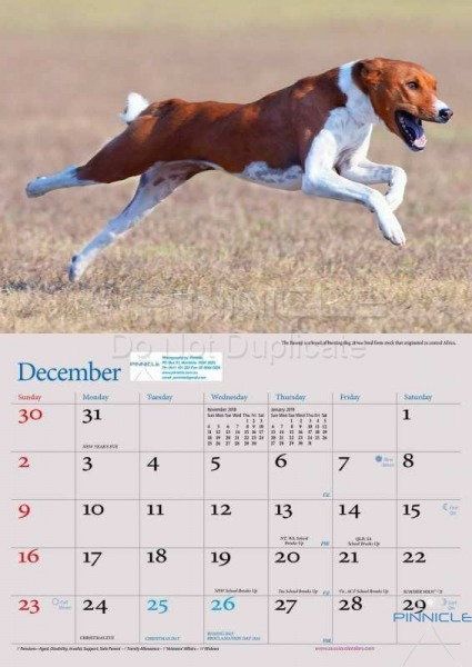 Dogs of Australia Calendar 2018 | dec.jpg